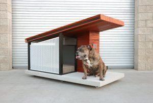 expensive dog house